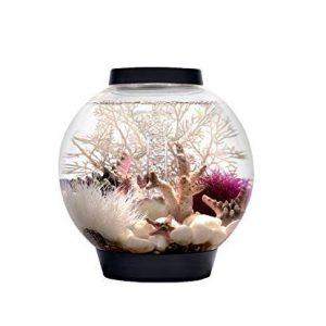 15-gallon-biorb-fish-tank