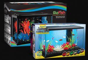 20 gal glofish tank