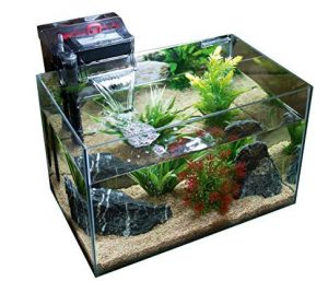 20-gallon-fish-tank-filters