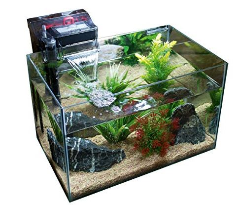 20-gallon-fish-tank-filters
