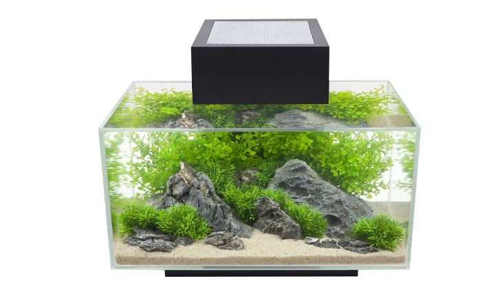 Fluval Edge 6 Gallon Aquarium