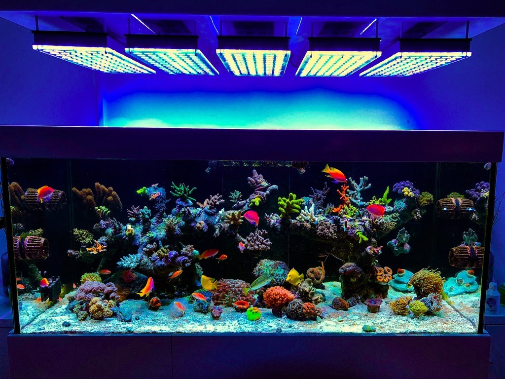 fish_tank_led_light