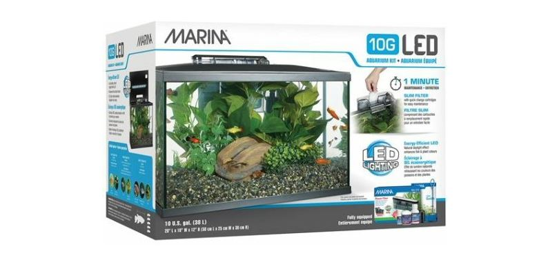 Best 10 Gallon Fish Tank and Aquarium Kits - Small Fish