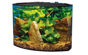 Tetra_Crescent_5_gallon_acrylic_aquarium_kit