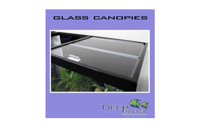 aquarium_glass_canopy