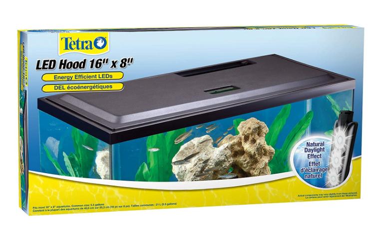 tetra_aquarium