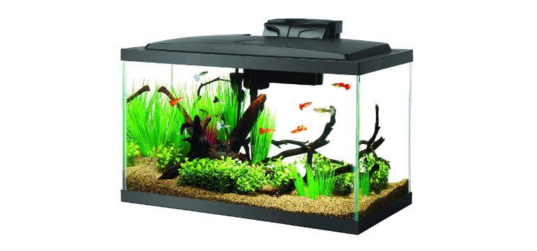 Aqueon 10 Gallon Tank LED Aquarium Kit