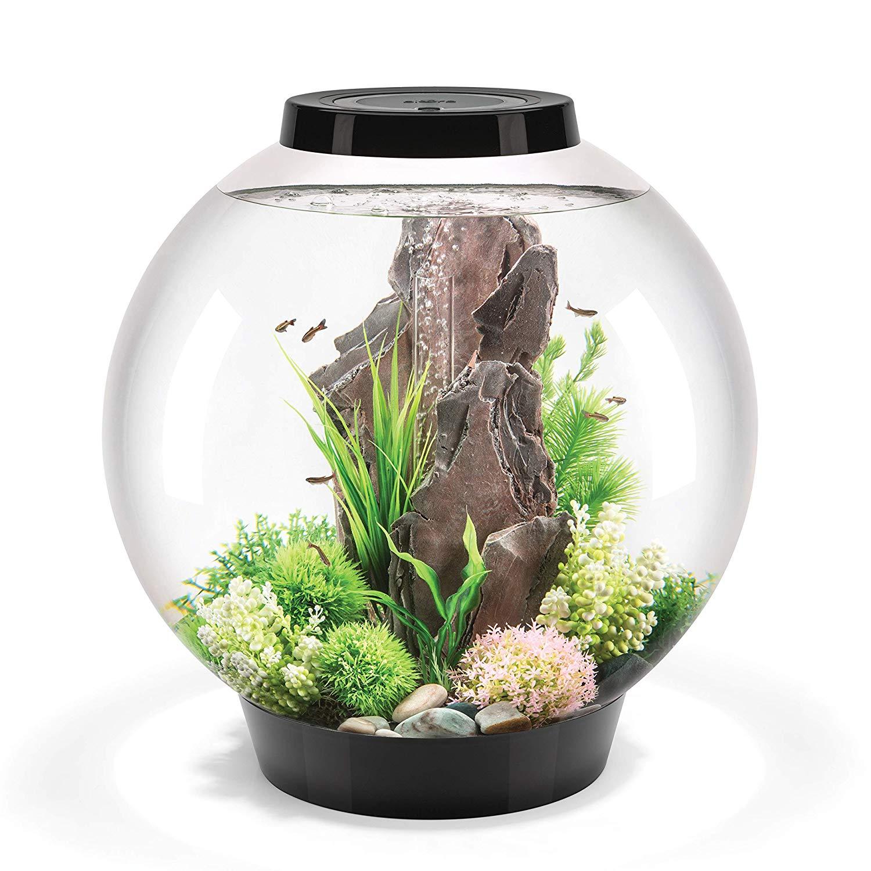 biOrb CLASSIC 60 Aquarium