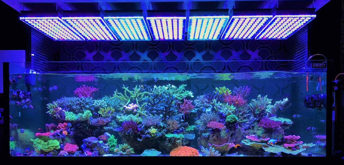 fish_tank_led_lights