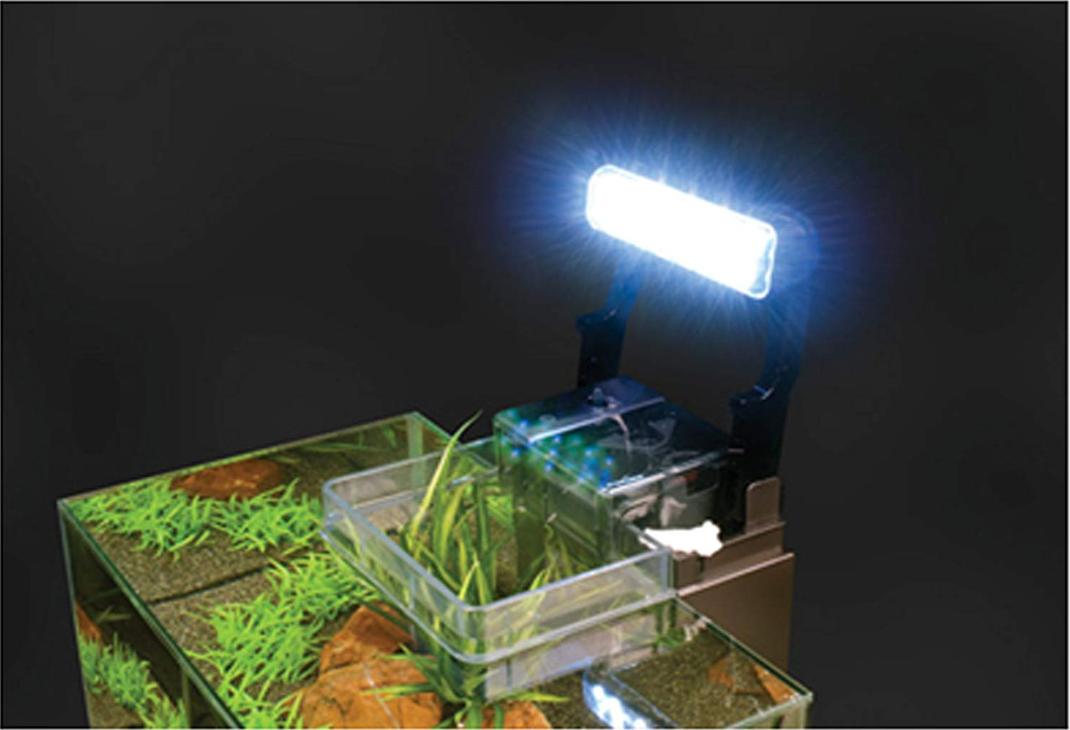 fluval_edge_aquarium_with_led_light