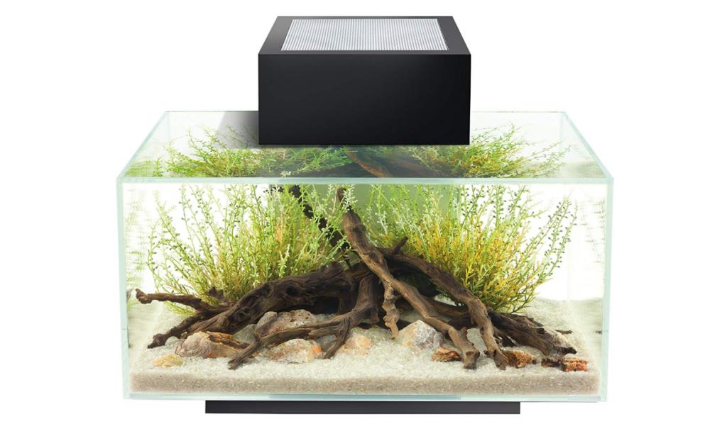 fluval_edge_aquarium