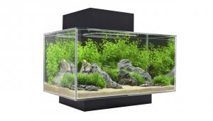 fluval_edge_fish_tank