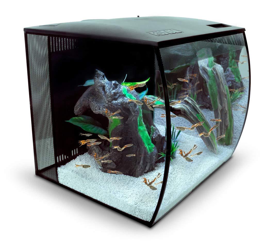 Fluval Flex 15 Gallon LED Fish Tank