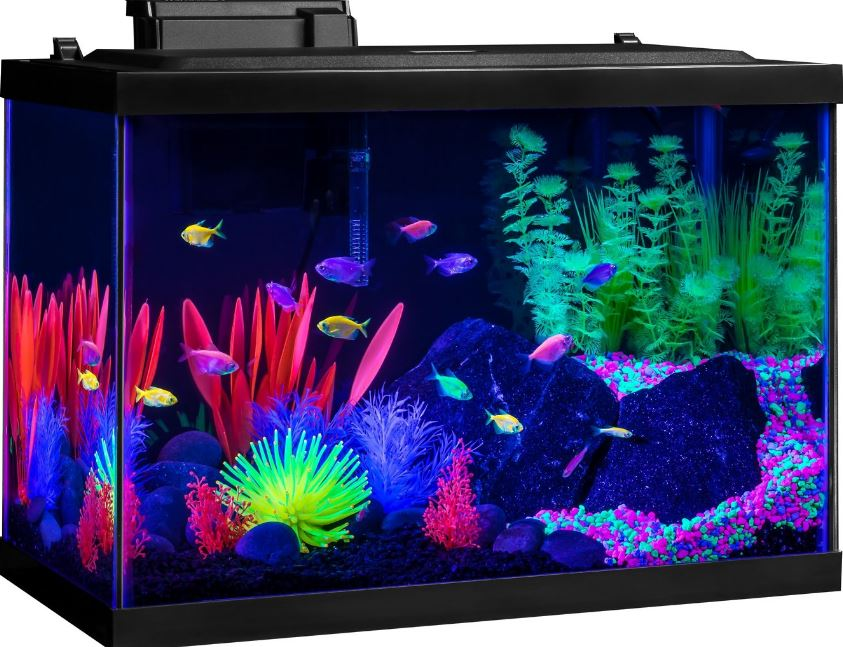 Best Glofish Tanks Reviews: 7, 7, 17, 7 Gallon Aquarium/Tanks