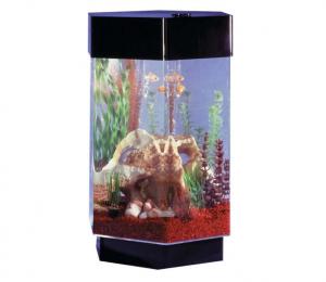 hexagonal_fish_tank
