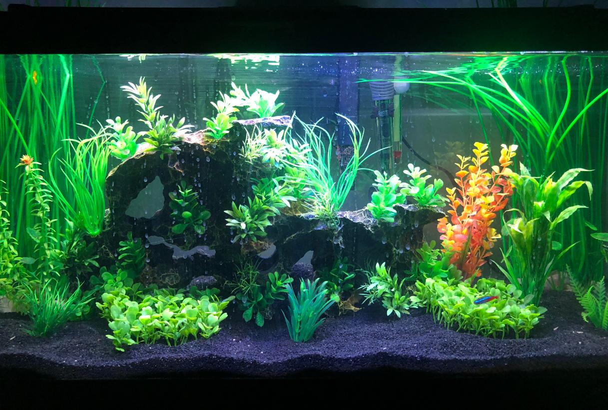 led_aquarium_hood
