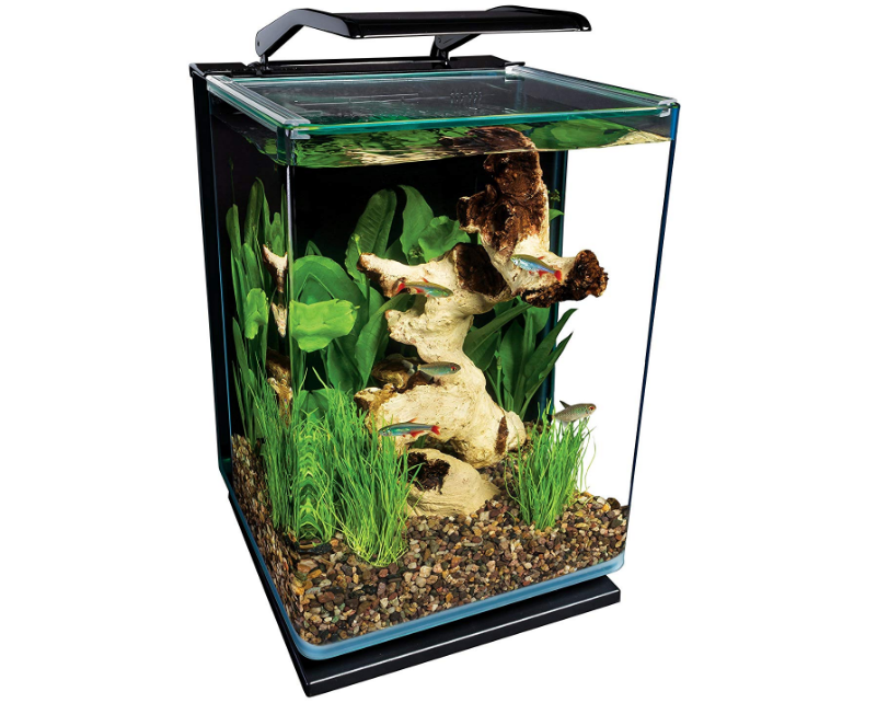MarineLand 5 Gallon Portrait Glass LED Aquarium