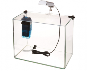penn_plax_curved_corner_glass_aquarium_kit
