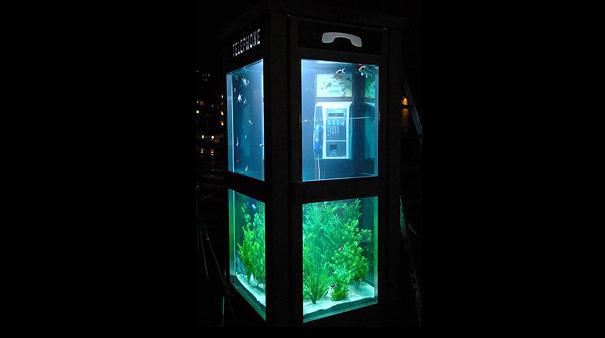 Telephone-Booth-Aquarium