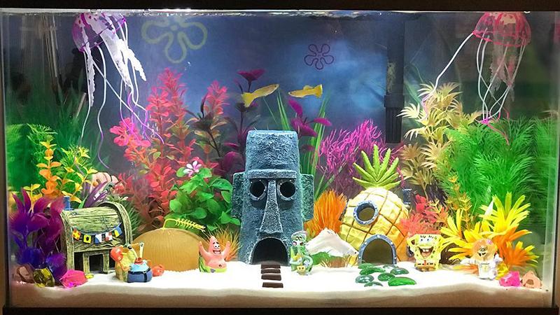 cool-fish-tanks