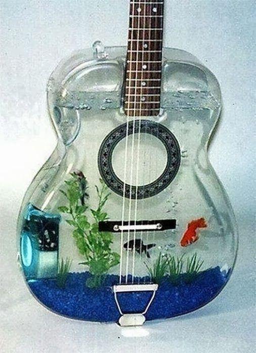 guitar-fish-tank