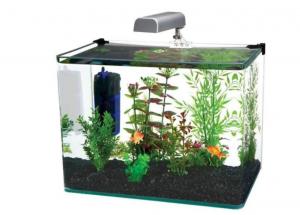 Best In Class Aquarium Kit