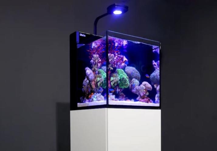 red-sea-max-nano-20