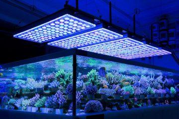 36-inch-led-aquarium-light