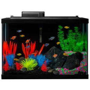 glofish_aquarium_kit