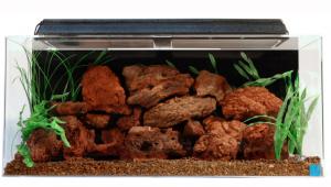 seaclear_acrylic_aquarium