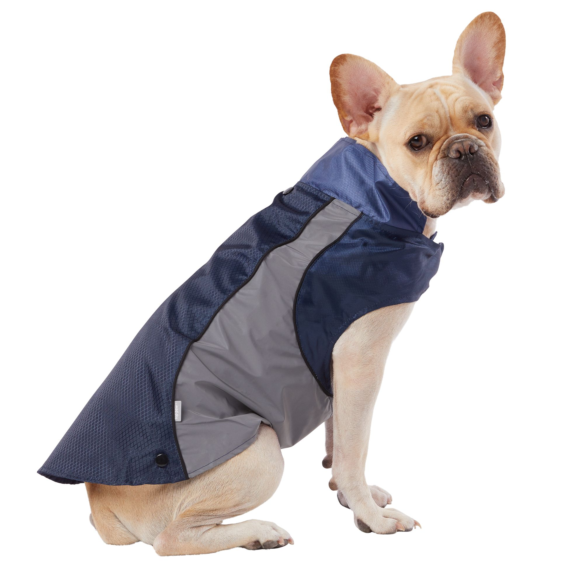 dog-clothing
