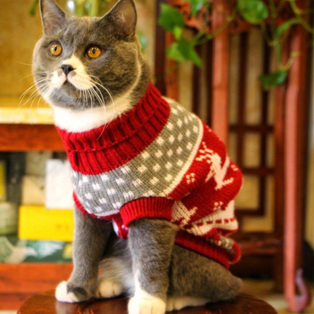 Cute-Cat-Sweater