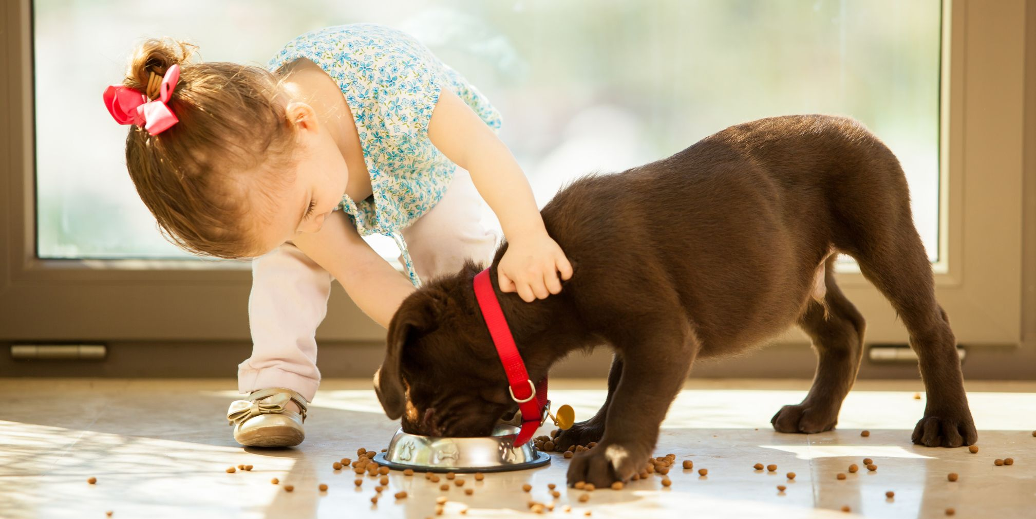 Family-Dogs-With-Childrens