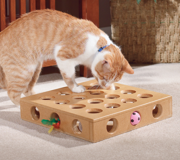 cat-toy-box