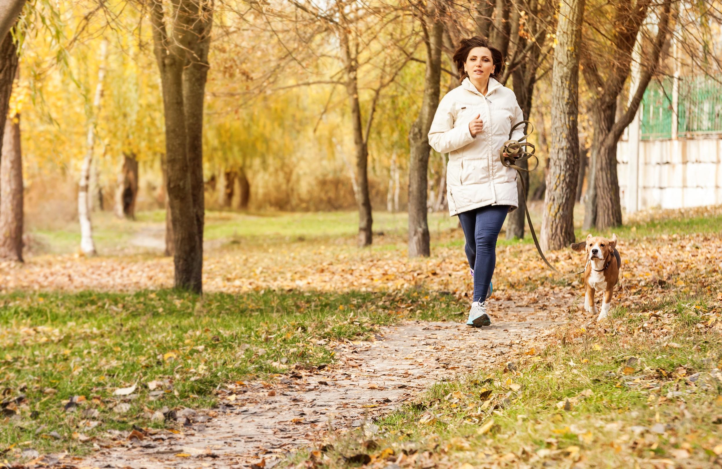 dog-running