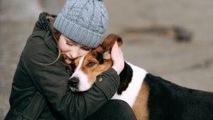 Dog Escape Behaviors