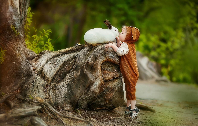 rabbit-hair