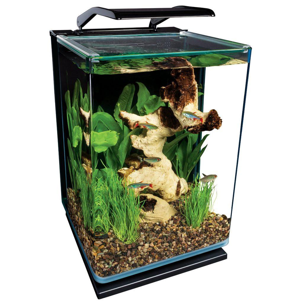 cheap-aquariums