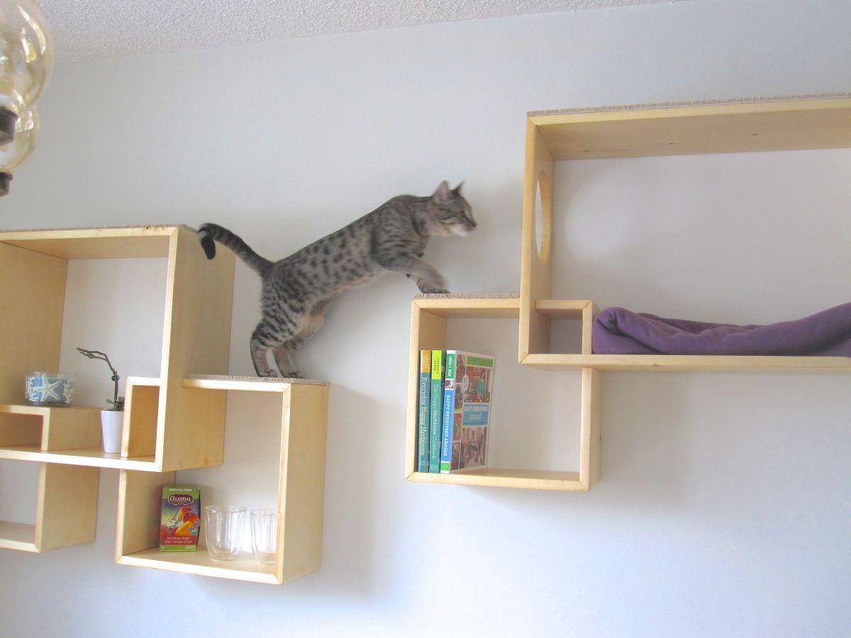 cat-furniture