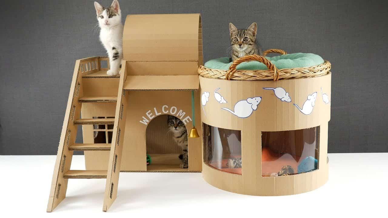 cat-housing