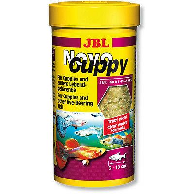 Guppy-Food